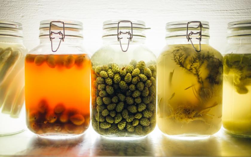 Fermentation 2.0 - Foto: Vadim Otto-Ursus