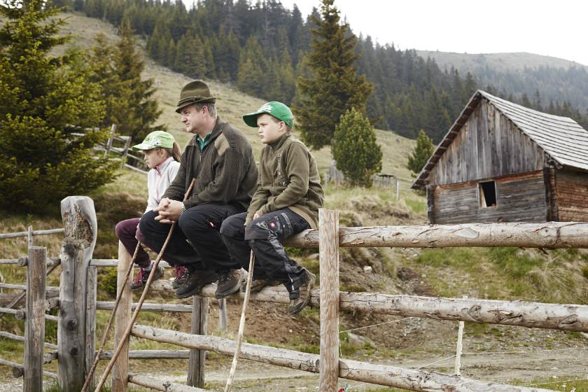 Im Frühjahr wurden die Braunviecher von einem Verbund aus Almbauern und deren Familien heraufgetrieben.
